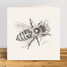 Honeybee Greetings Card